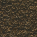 seeds008-inca