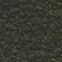 seeds008-tl84