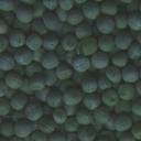seeds012-tl84